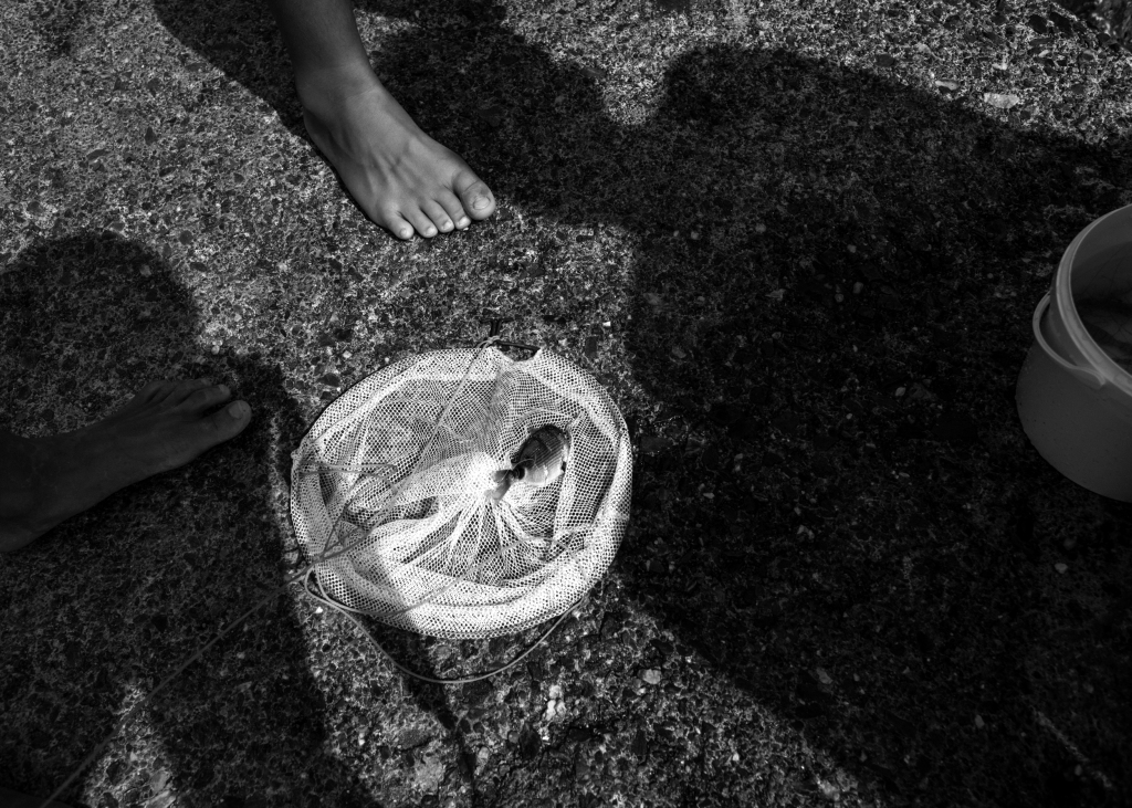 fish in the net, feet and body shadowos
